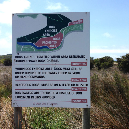 Dog Friendly Exercise Areas in Denmark WA